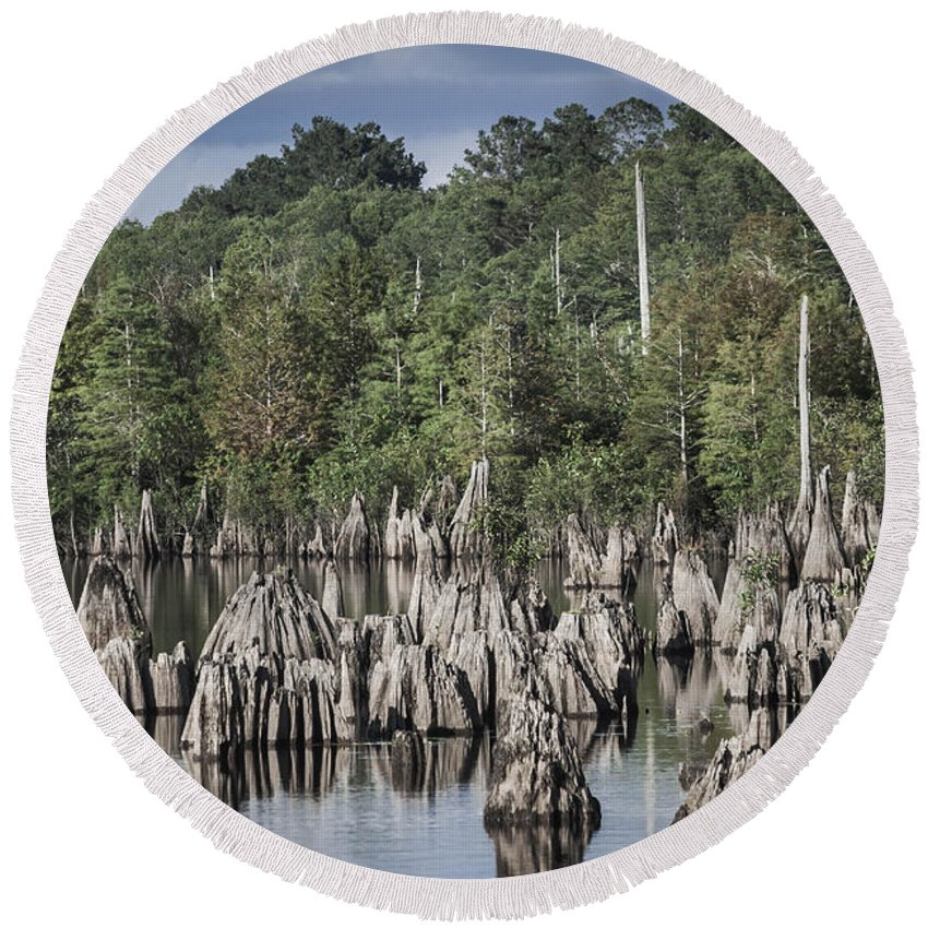 Landscape Round Beach Towel featuring the photograph Dead Lakes Cypress Stumps by Debra Forand