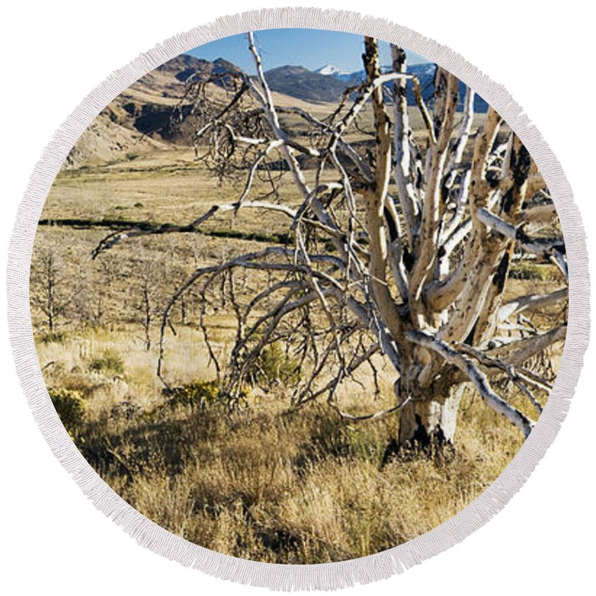 Western Scenes Round Beach Towel featuring the photograph Dead Tree Panorama by Norman Andrus
