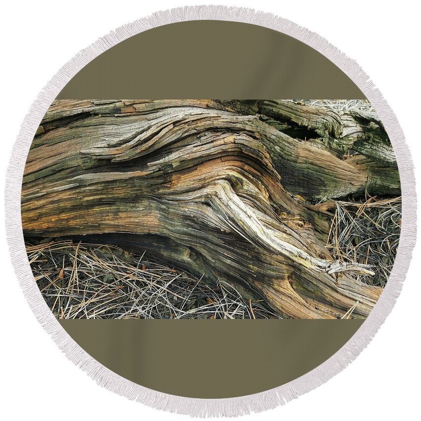 Tree Round Beach Towel featuring the photograph Dead Tree Textures by Jim Thomas