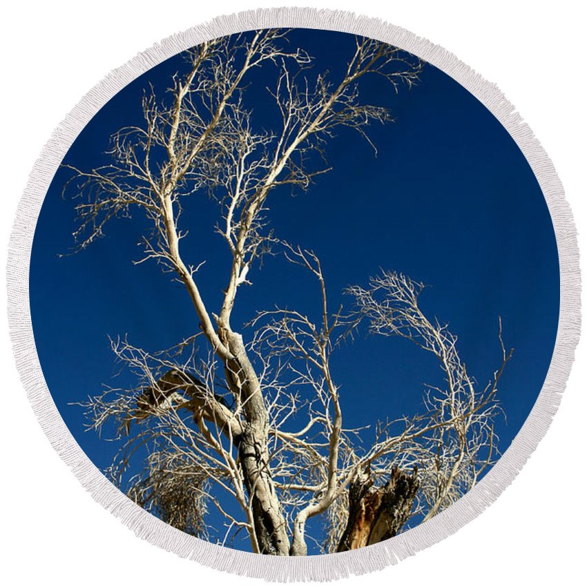 Tree Round Beach Towel featuring the photograph Deep Blue White Tree by Chris Brannen