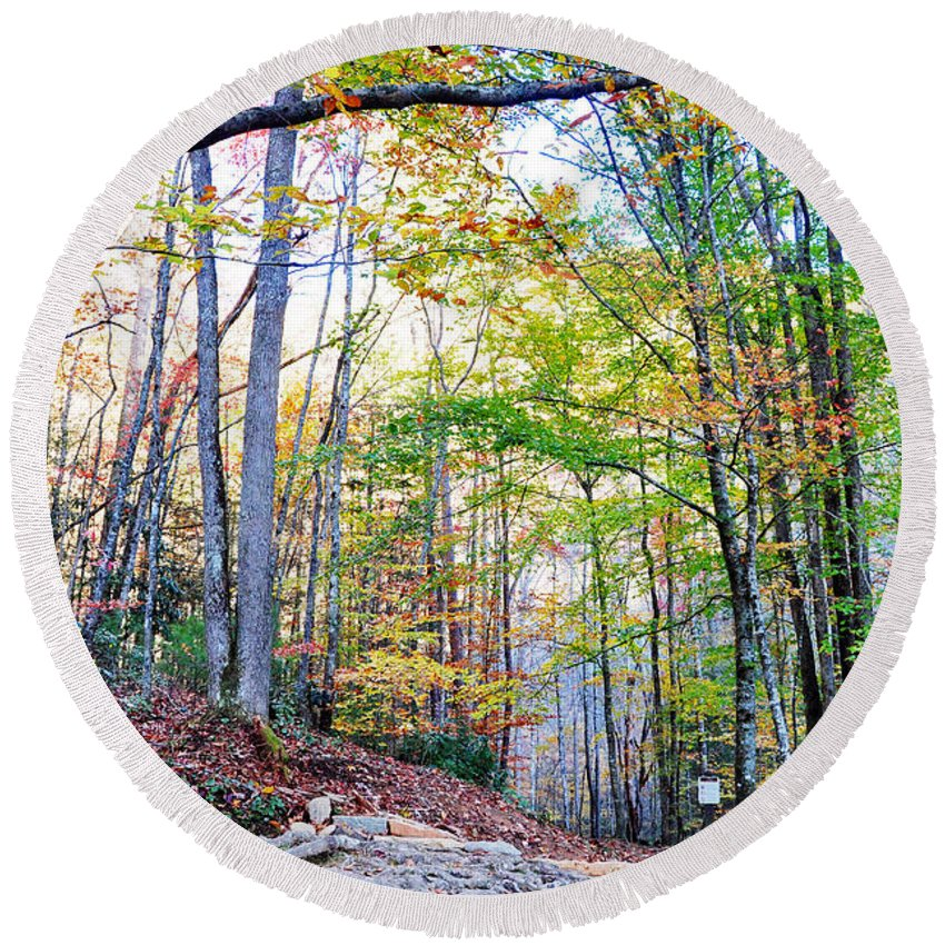Smokey Mountain Round Beach Towel featuring the photograph Deep In The Forest by Brittany Horton