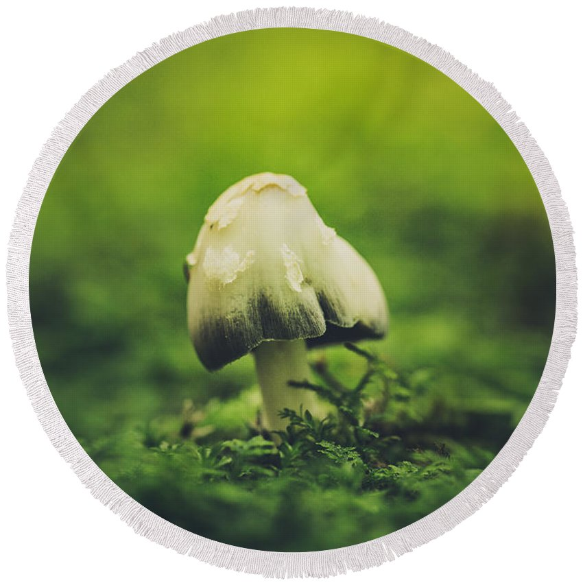 Mushroom Round Beach Towel featuring the photograph Deep In The Forest by Shane Holsclaw