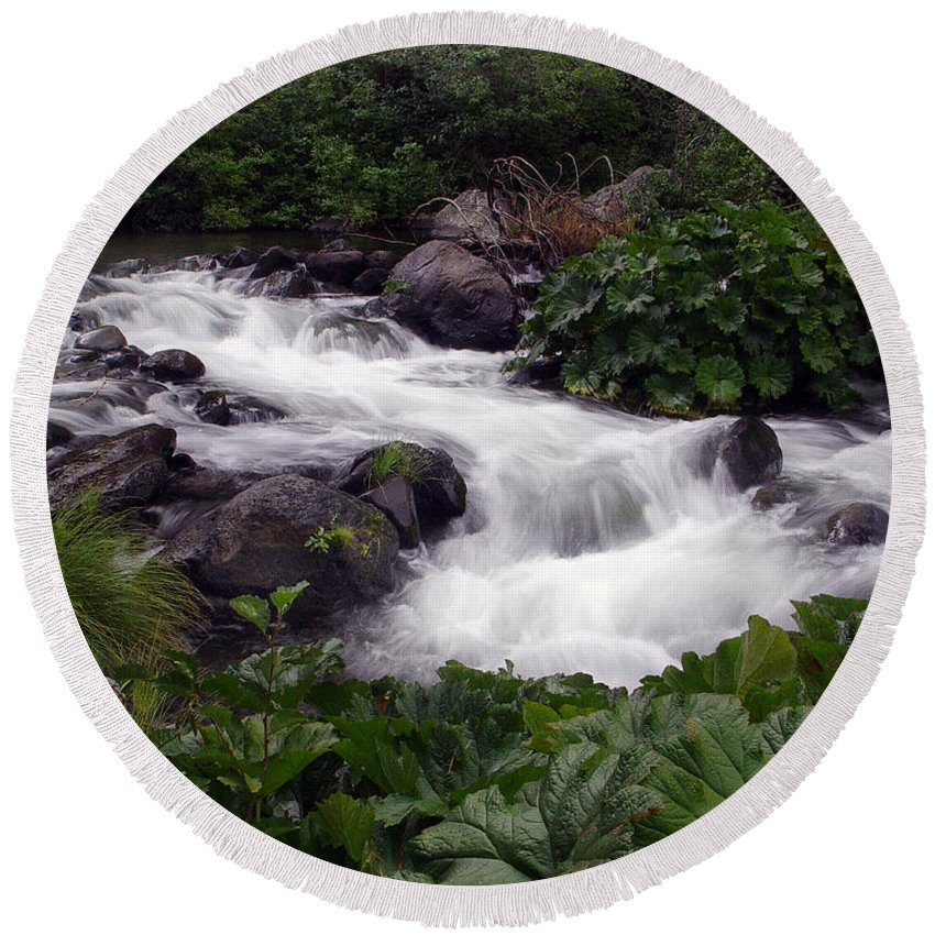 Creek Round Beach Towel featuring the photograph Deer Creek 07 by Peter Piatt