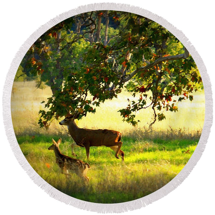 Deer Round Beach Towel featuring the photograph Deer In Autumn Meadow - Digital Painting by Carol Groenen