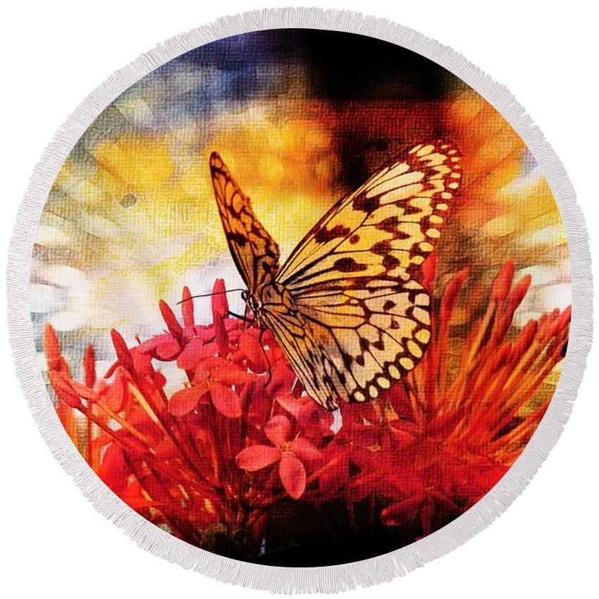 Butterfly Round Beach Towel featuring the photograph Delicate Beauty by Aaron Berg