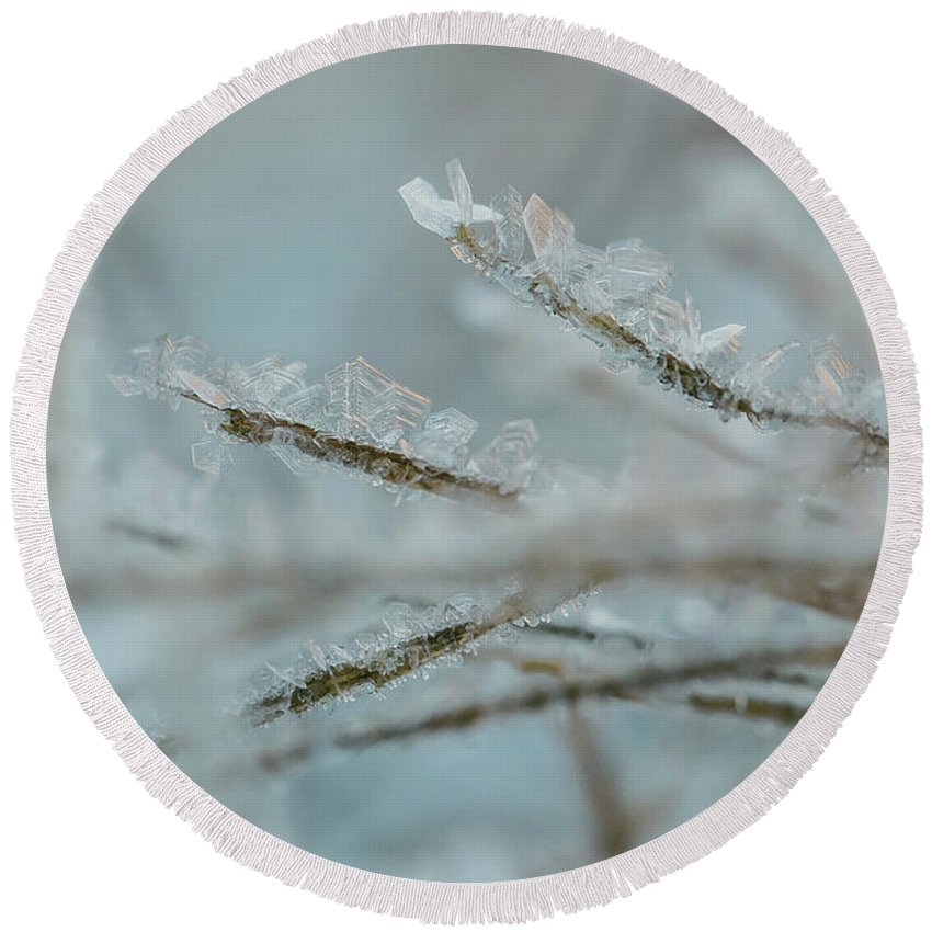 2016 Round Beach Towel featuring the photograph Delicate Morning Frost by Amber Flowers