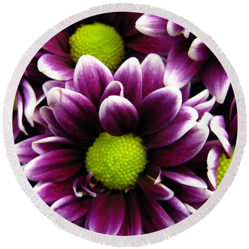 Purple Round Beach Towel featuring the photograph Delicate Purple by Rhonda Barrett