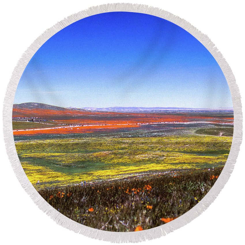 Wildflowers Round Beach Towel featuring the photograph Desert Carpet by Jerry Sellers