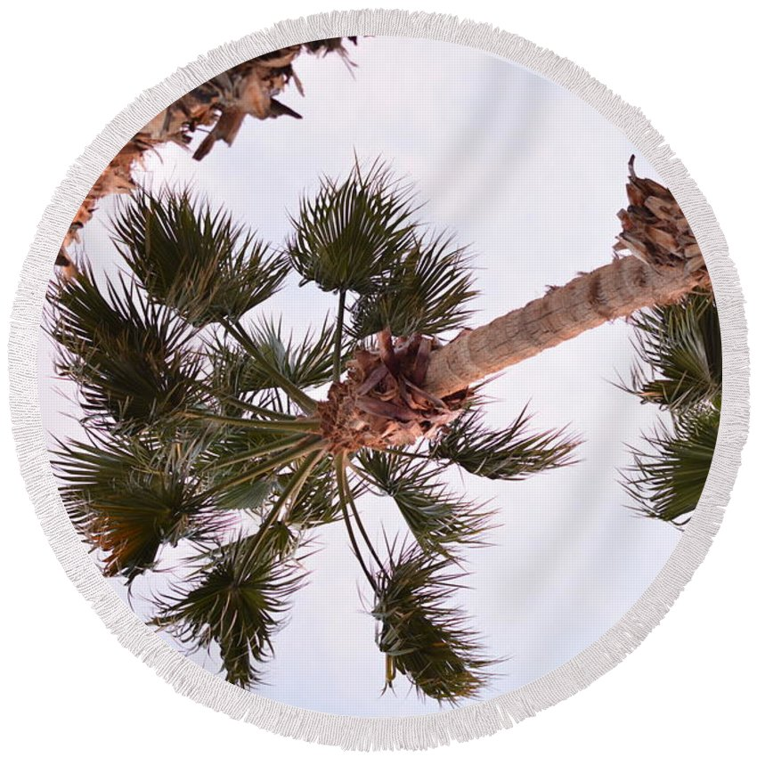 Landscape Round Beach Towel featuring the photograph Desert Palm by Emily Smith
