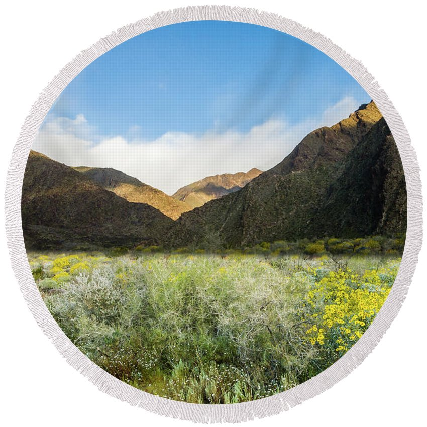 Wildflowers Round Beach Towel featuring the photograph Desert View by Jerry Sellers