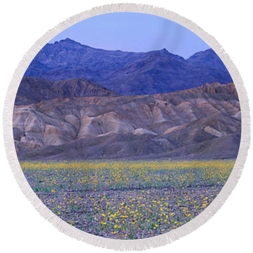 Photography Round Beach Towel featuring the photograph Desert Wildflowers, Death Valley by Panoramic Images