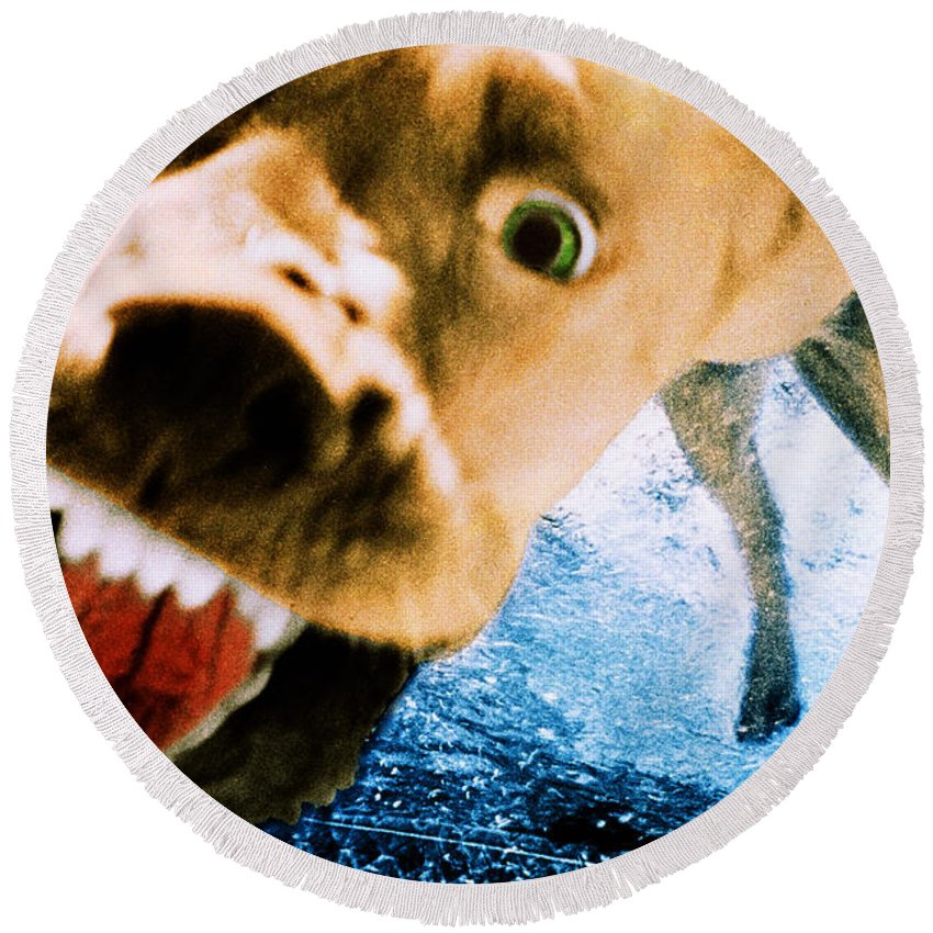 Dog Round Beach Towel featuring the photograph Devil Dog Underwater by Jill Reger