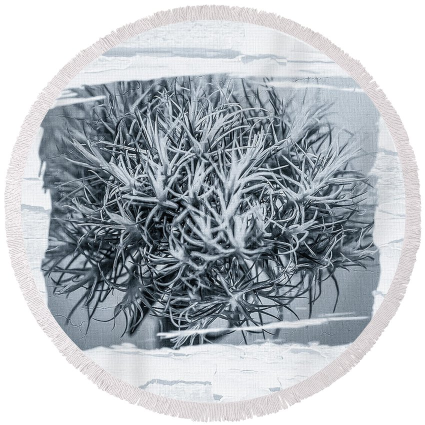 Black And White Round Beach Towel featuring the digital art Dianthus Barbatus Bw by Mona Stut