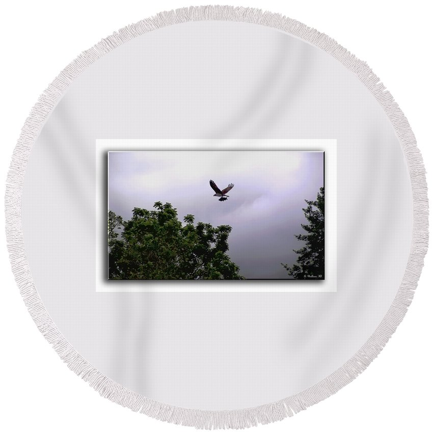 2d Round Beach Towel featuring the photograph Dinner by Brian Wallace
