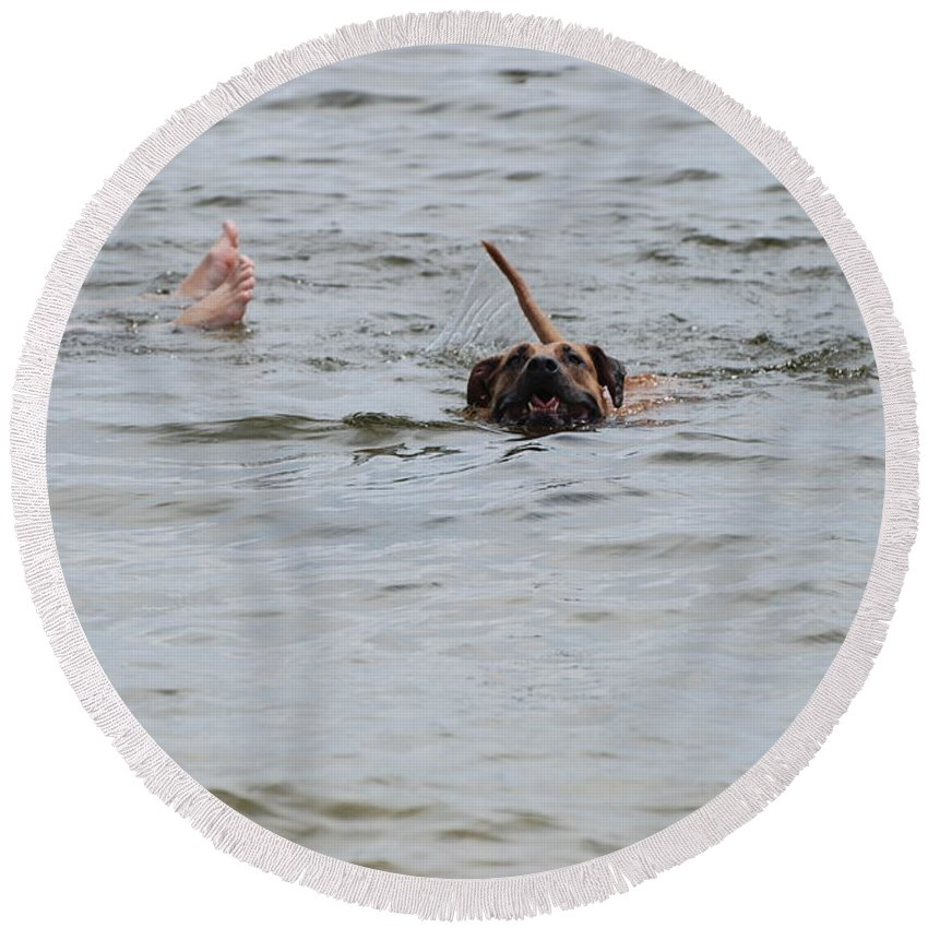 Feet Round Beach Towel featuring the photograph Dirty Water Dog And Feet by Rob Hans