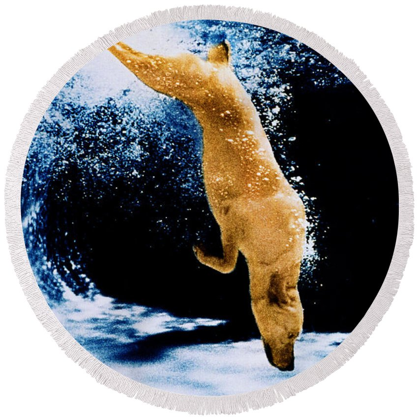 Pet Round Beach Towel featuring the photograph Diving Dog Underwater by Jill Reger