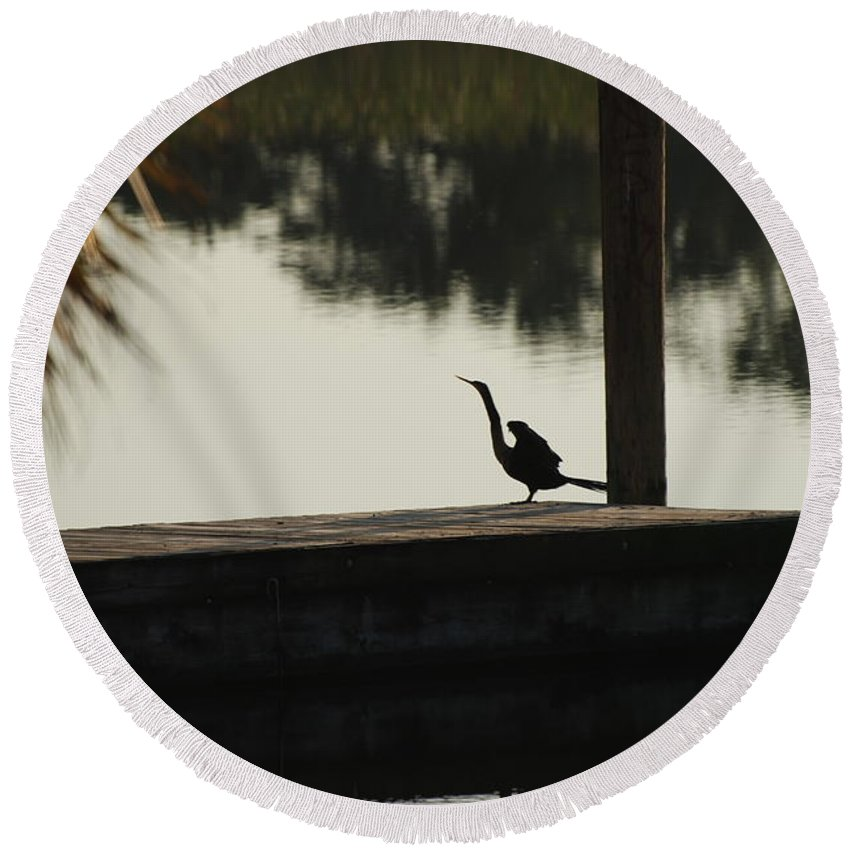 Reflections Round Beach Towel featuring the photograph Dock Bird In Color by Rob Hans