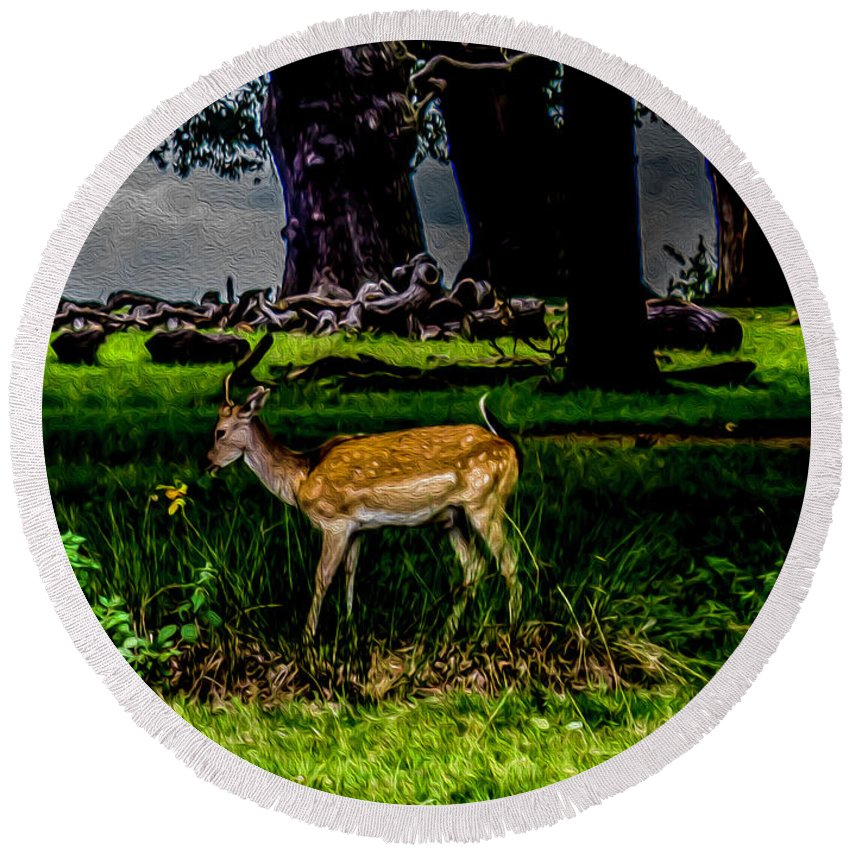 Doe Round Beach Towel featuring the photograph Doe - Oil Painting Print by Nigel Dudson