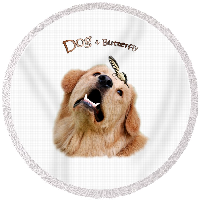 Dog Round Beach Towel featuring the photograph Dog And Butterfly by Christina Rollo