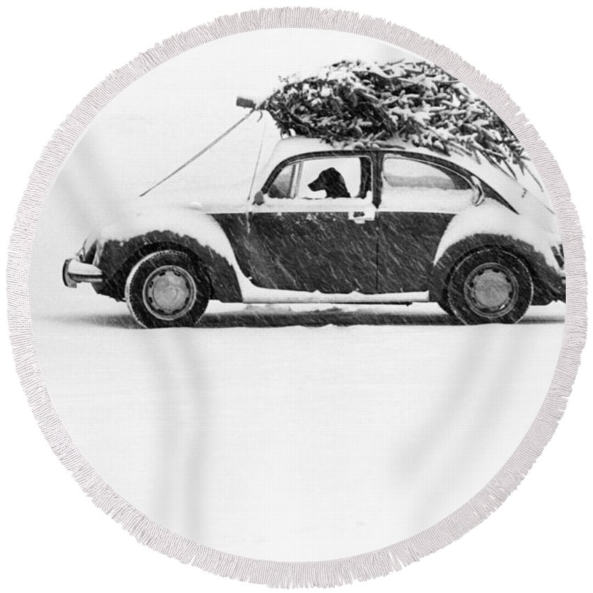 Animal Round Beach Towel featuring the photograph Dog In Car by Ulrike Welsch and Photo Researchers