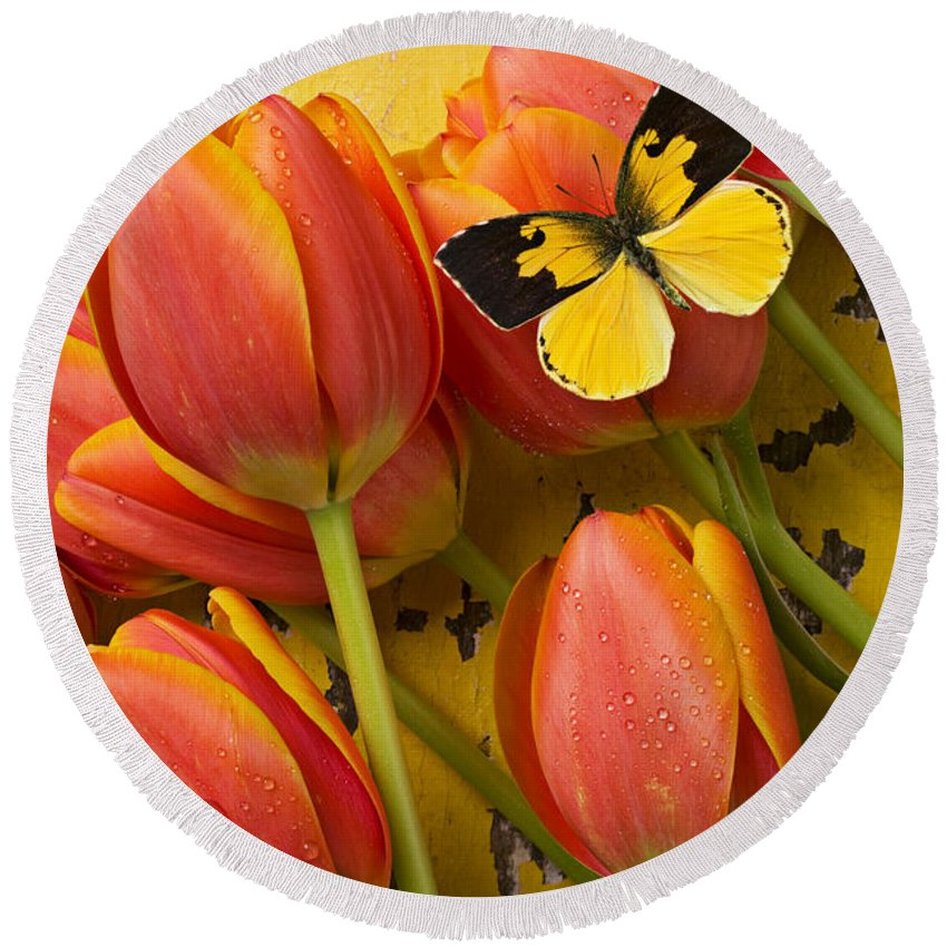 Butterfly Round Beach Towel featuring the photograph Dogface Butterfly And Tulips by Garry Gay