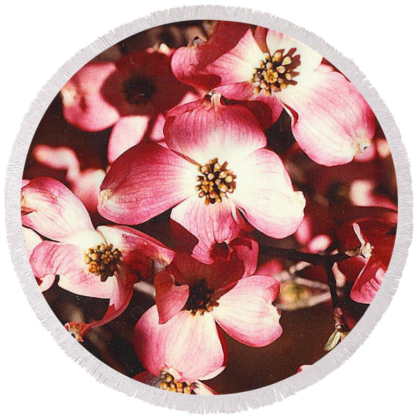Dogwood Round Beach Towel featuring the photograph Dogwood Harmony by Nancy Mueller