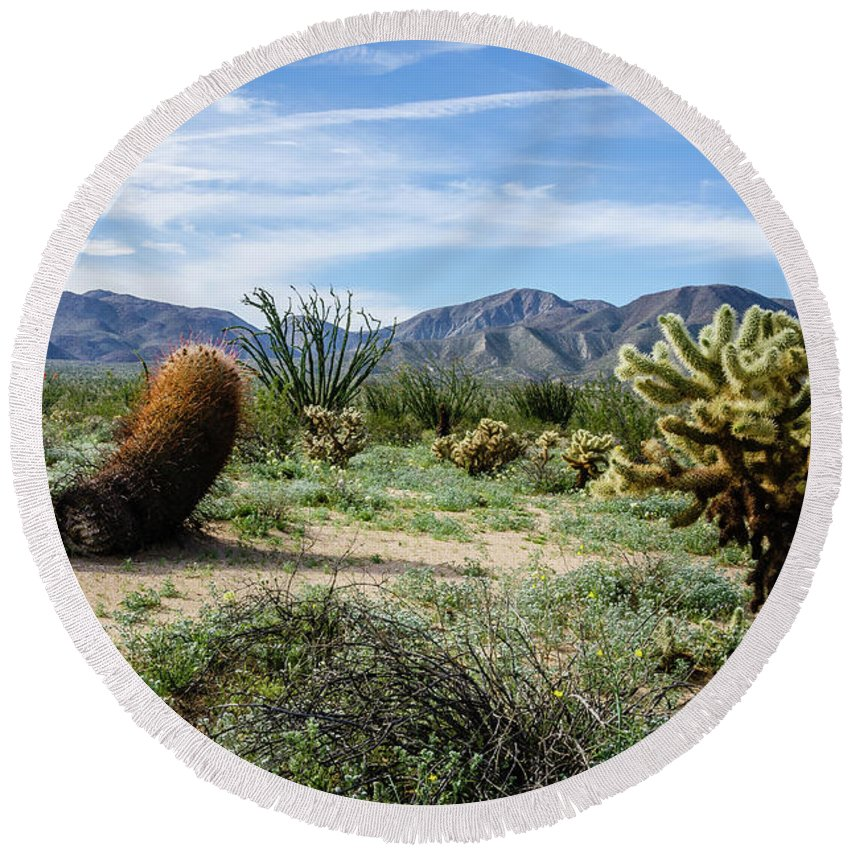 Wildflowers Round Beach Towel featuring the photograph Double Barrel Cactus by Jerry Sellers