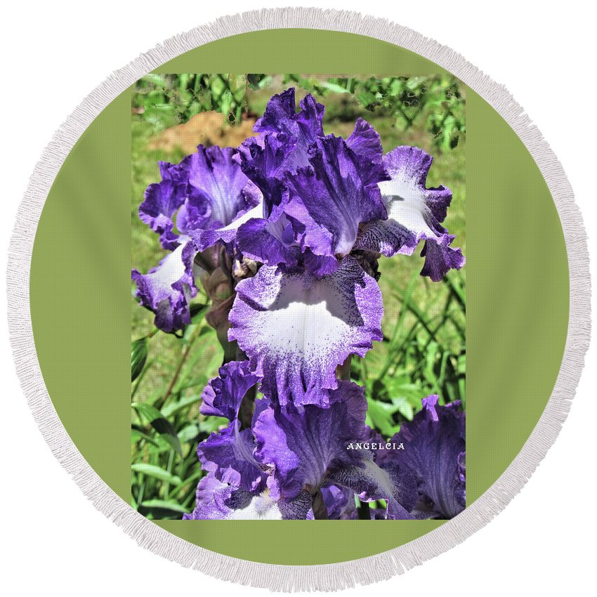 Iris Round Beach Towel featuring the photograph Double Ruffled Purple Iris by Angelcia Wright