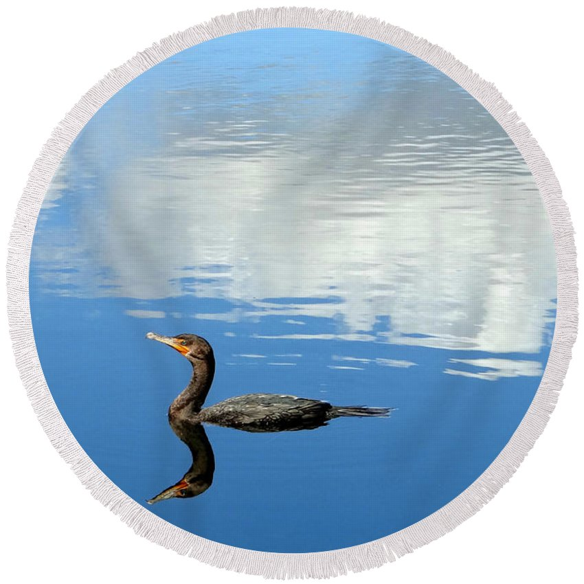 Cormorant Round Beach Towel featuring the photograph Double Take by Edie Ann Mendenhall