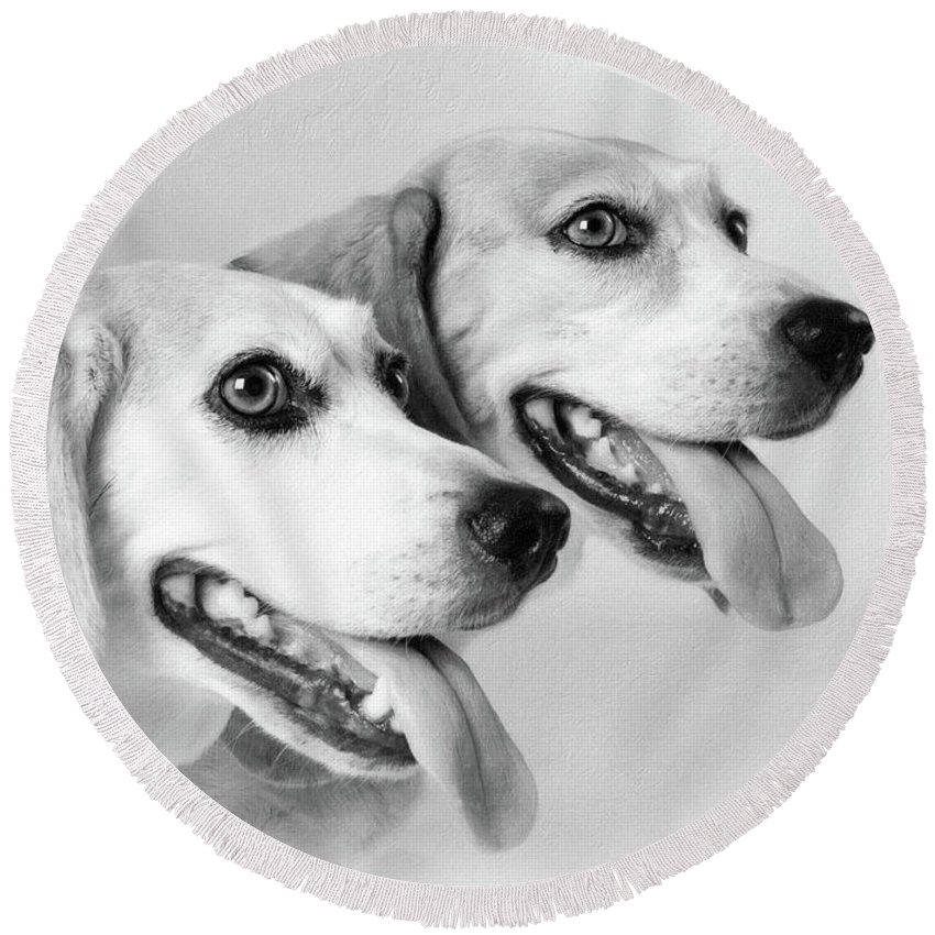 Animals Round Beach Towel featuring the photograph Double Trouble by Sue Collura