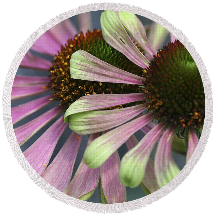 Flower Round Beach Towel featuring the photograph Double Vision Cone by Deborah Benoit