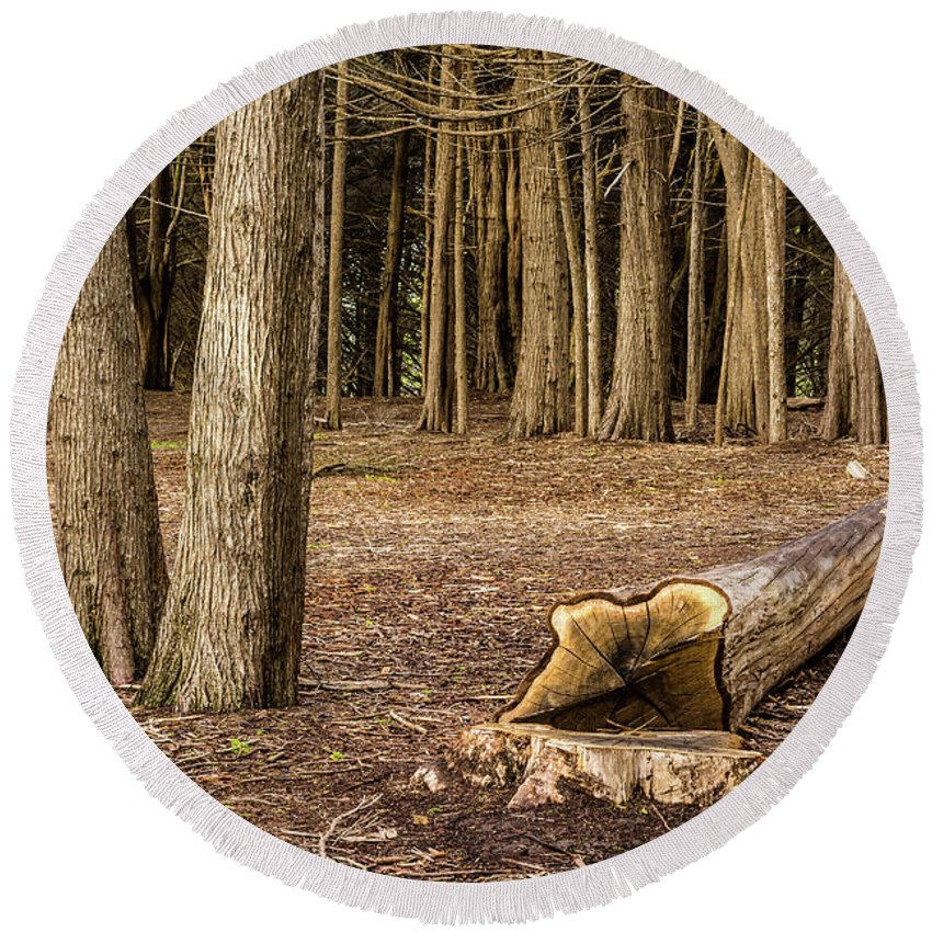 Landscape Round Beach Towel featuring the photograph Down Tree by Javier Flores