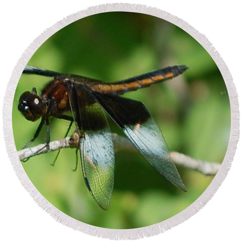 Digitall Photo Round Beach Towel featuring the photograph Dragon Fly by David Lane