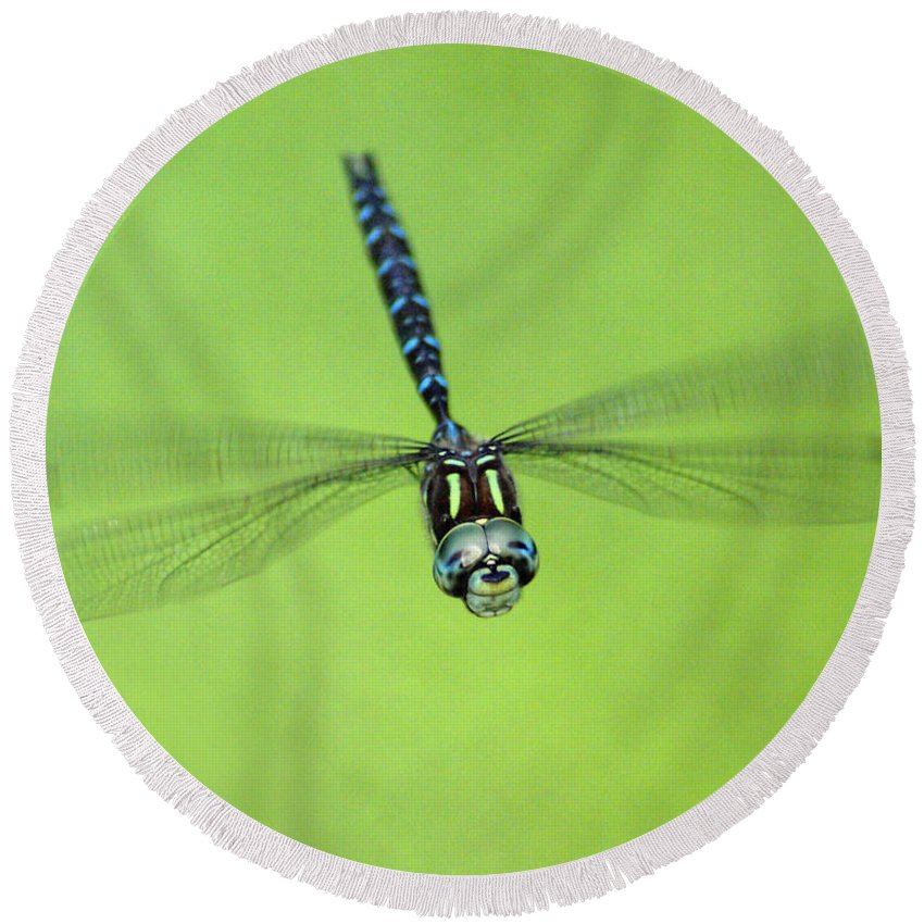 Spokane Round Beach Towel featuring the photograph Dragonfly In Flight by Ben Upham III