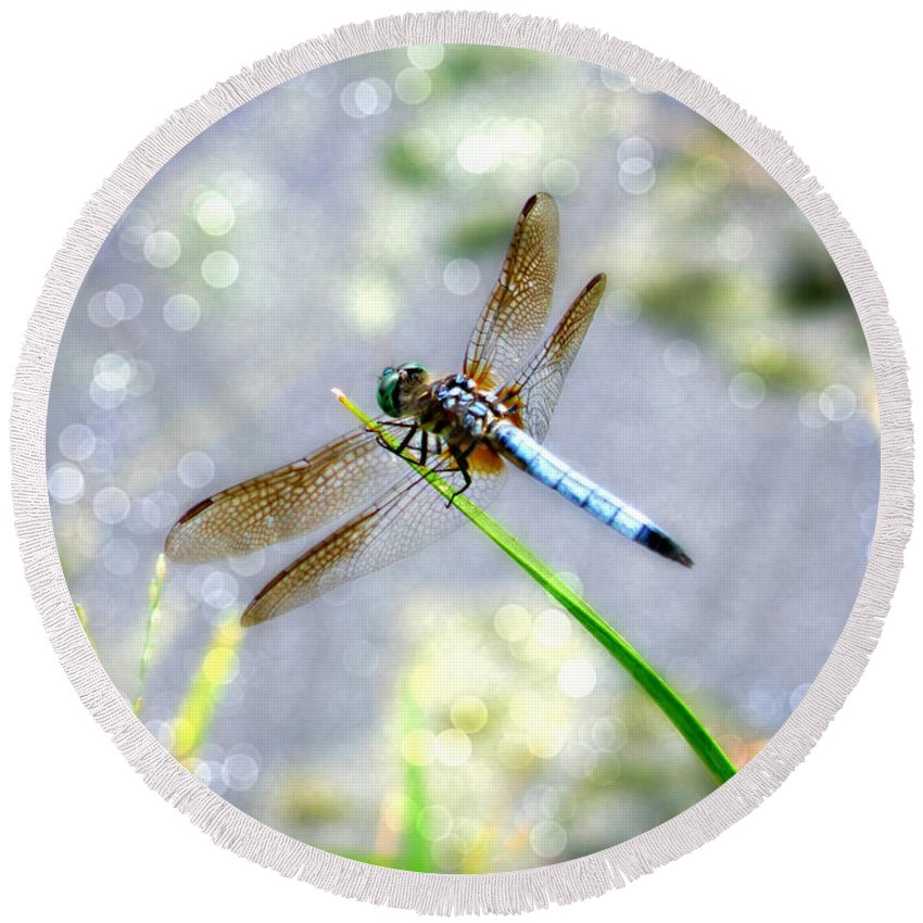 Dragonfly Round Beach Towel featuring the photograph Dragonfly Portrait by Chris Crowley