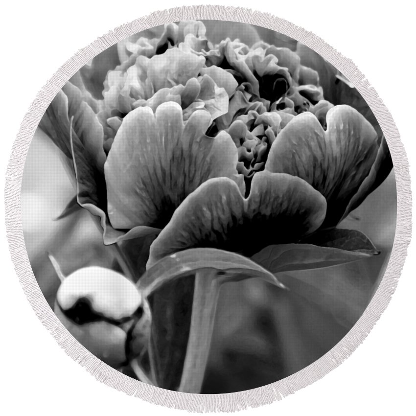 Peony Round Beach Towel featuring the photograph Drama In The Garden by Angelina Tamez