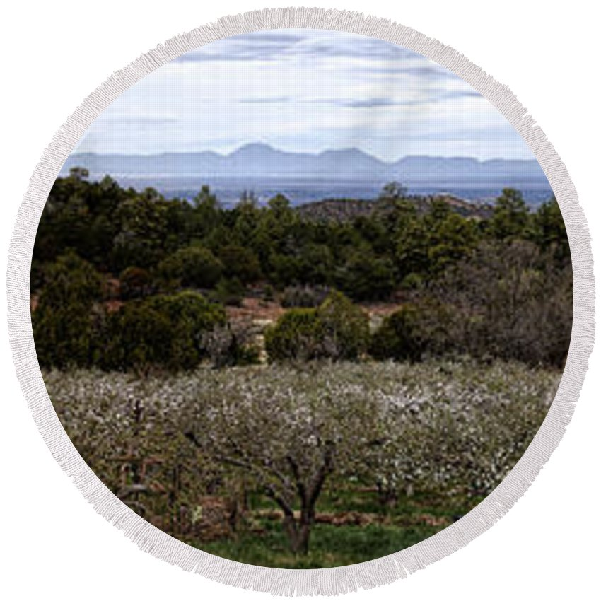 Round Beach Towel featuring the photograph Draney Orchard Pano by Diana Powell