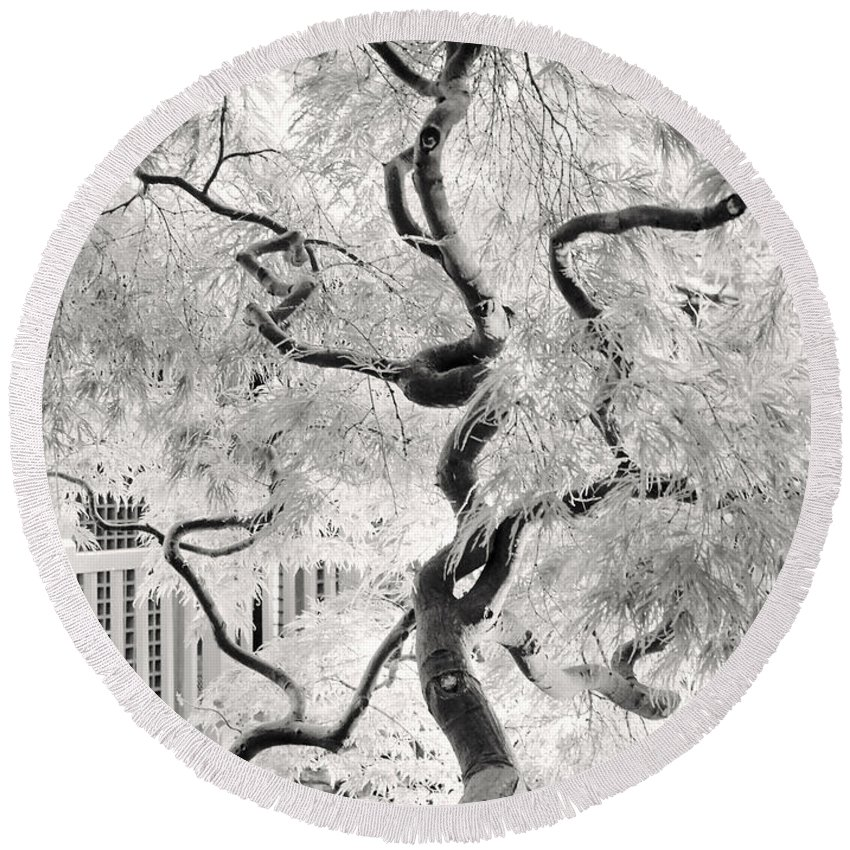 Bw Round Beach Towel featuring the photograph Dream Tree by Dorit Fuhg