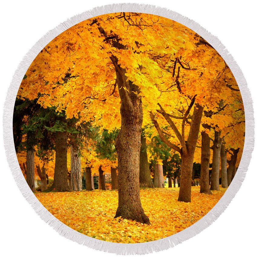 Warm Colors Round Beach Towel featuring the photograph Dreamy Autumn Day by Carol Groenen