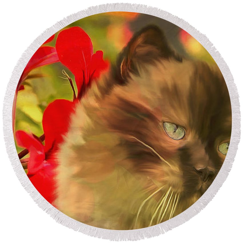 Pet Round Beach Towel featuring the digital art Dreamy Cat With Geranium 2015 by Kathryn Strick