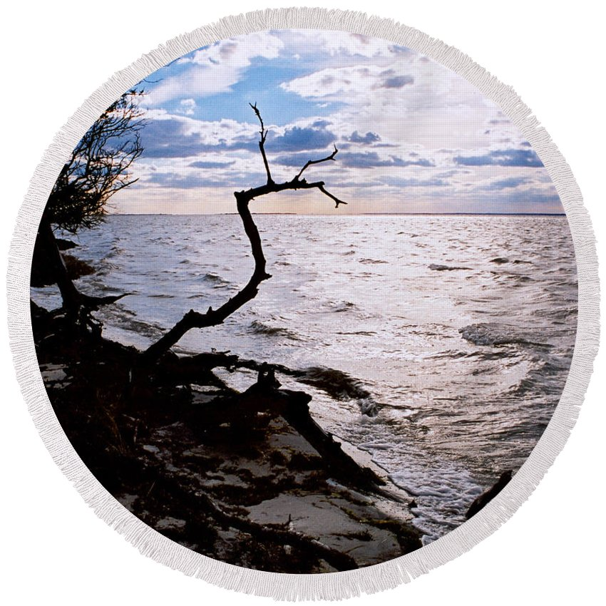 Barnegat Round Beach Towel featuring the photograph Driftwood Dragon-barnegat Bay by Steve Karol