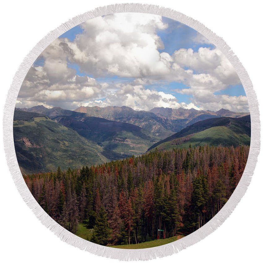Trees Round Beach Towel featuring the photograph Dying Evergreens by Madeline Ellis