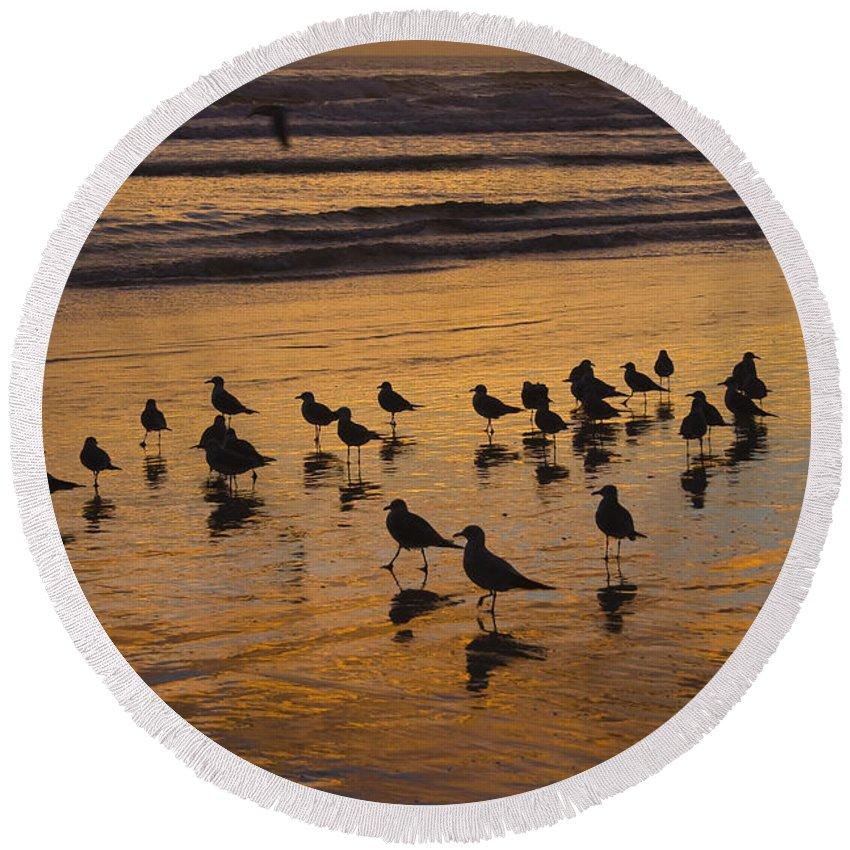 Beach Ocean Seagull Gull Bird Birds Sand Wave Waves Sun Sunrise Reflection Shaddow Sky Cloud Round Beach Towel featuring the photograph Eager Anticipation by Andrei Shliakhau