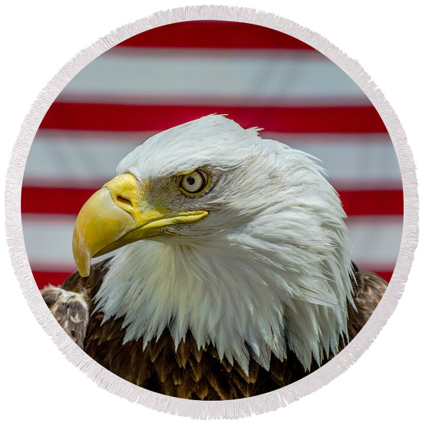 America Round Beach Towel featuring the photograph Eagle 5 by Cameron Knudsen