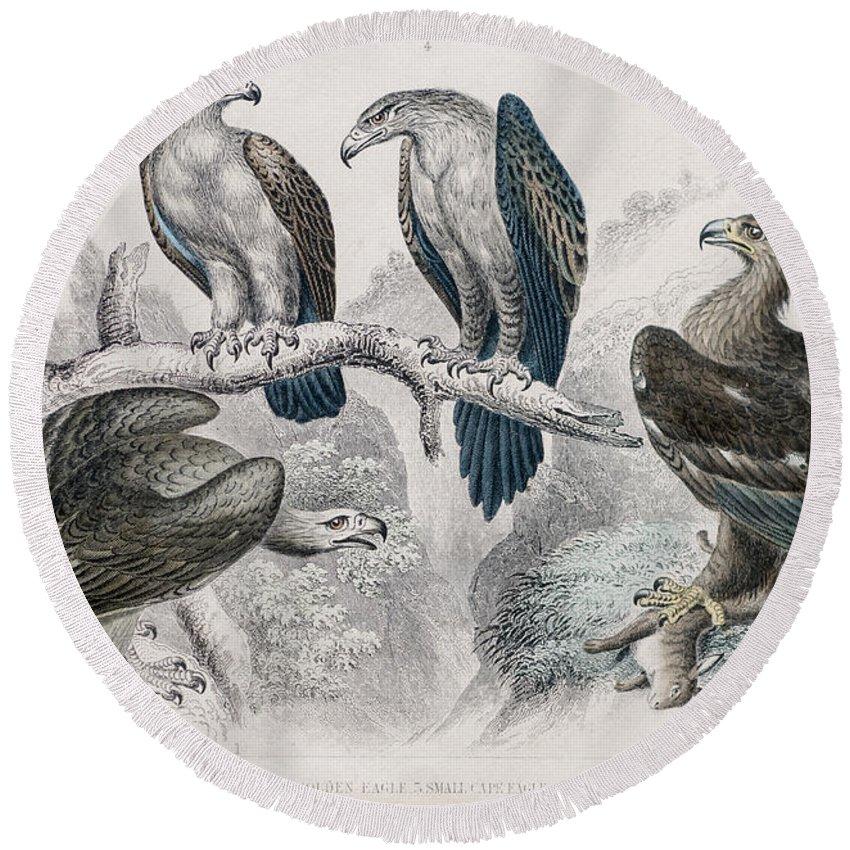 Bird Round Beach Towel featuring the photograph Eagle Birds Print by Ilan Rosen
