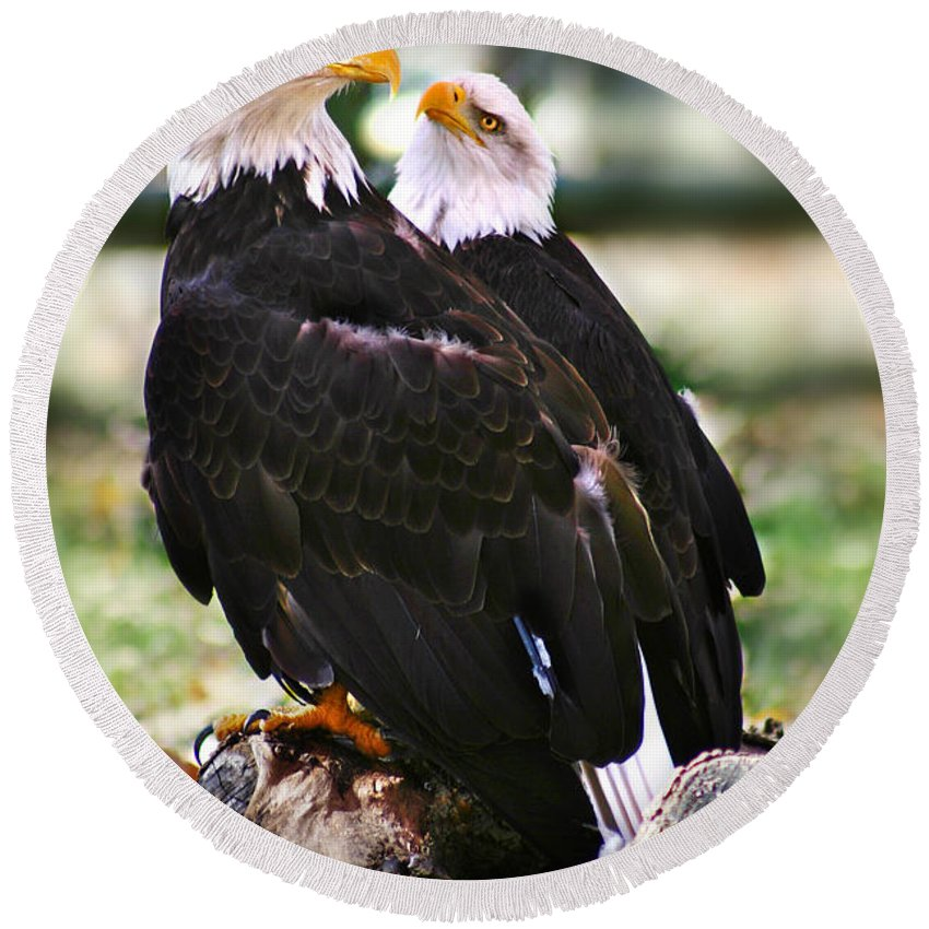 Eagles Round Beach Towel featuring the photograph Eagles by Anthony Jones