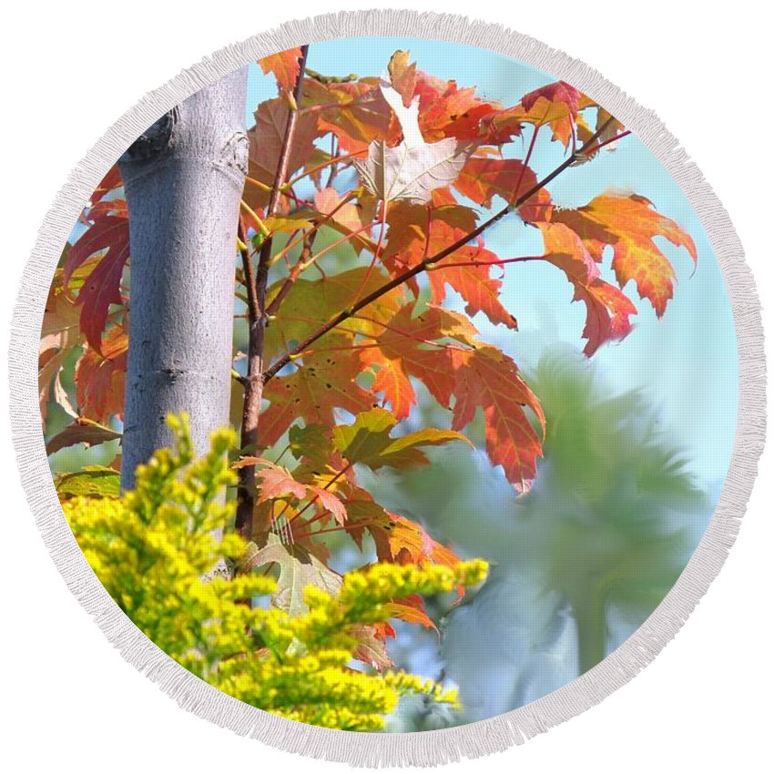 Maple Round Beach Towel featuring the photograph Early Autumn by Ian MacDonald