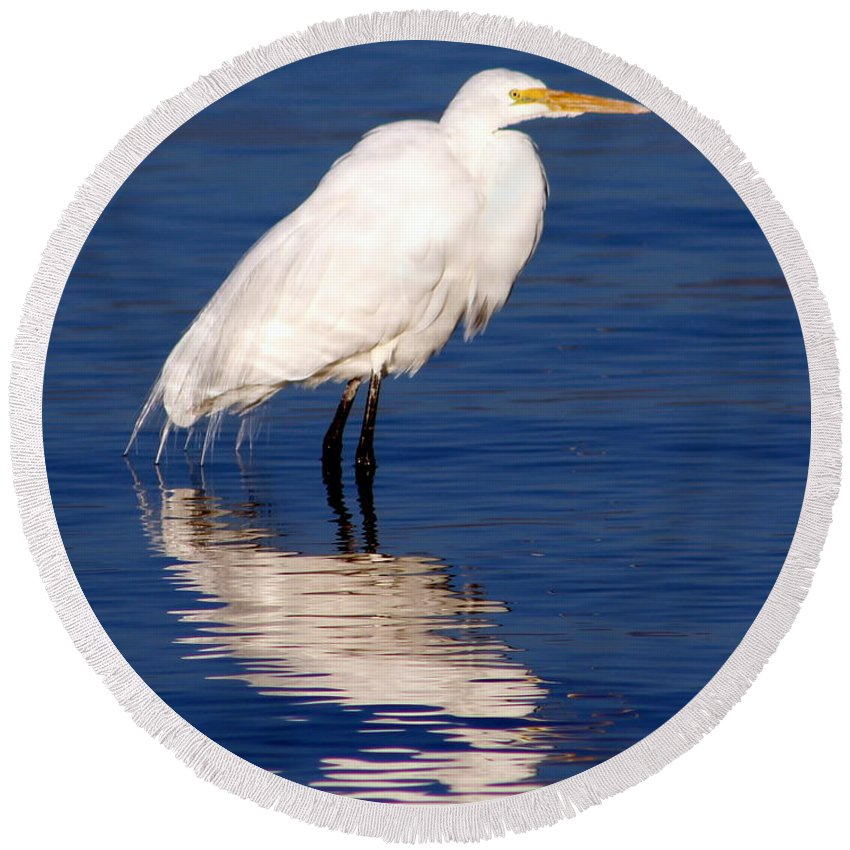 Egret Round Beach Towel featuring the photograph Early Bird Photograph by Kimberly Walker