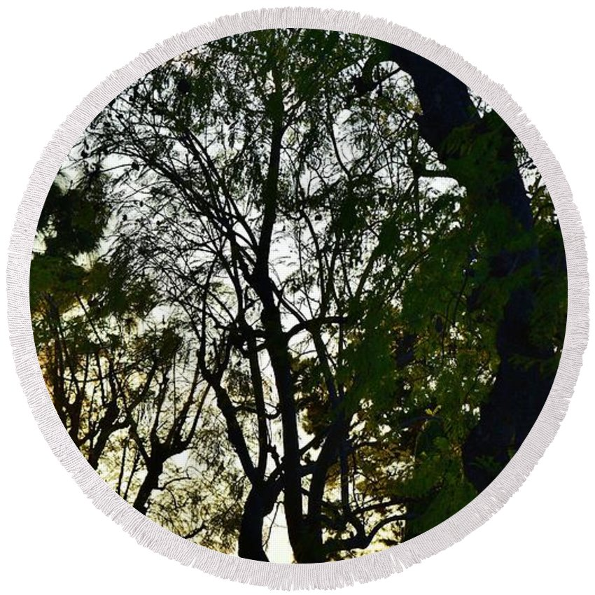 Linda Brody Round Beach Towel featuring the photograph Early Evening Sunset Through The Trees by Linda Brody