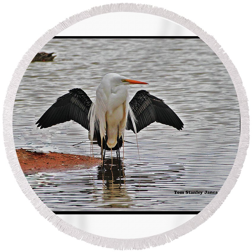 Egret And Cormorant Wings Round Beach Towel featuring the digital art Egret And Cormorant Wings by Tom Janca